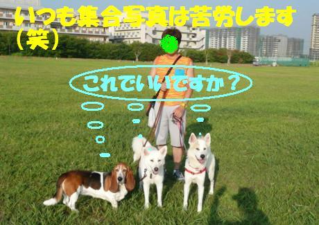 f0121712_1348119.jpg