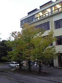 おさんぽ_e0103327_22113355.jpg