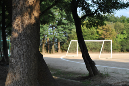 日・常・旅・行_b0194880_22193056.jpg
