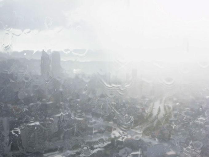 雨の月曜日_e0082981_0285100.jpg