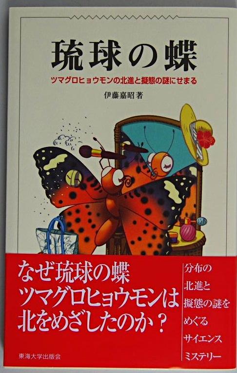 秩父の晩夏の蝶(2010/9/12)_f0031682_9143296.jpg
