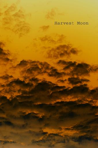 暗雲_b0208495_1612225.jpg