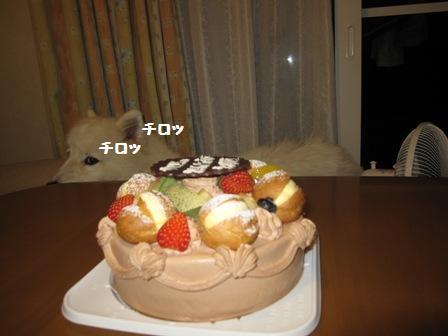 f0212597_8551877.jpg