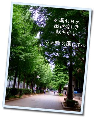 b0189200_17203787.jpg