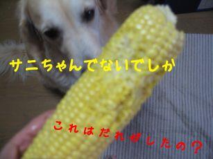 b0008217_12511561.jpg