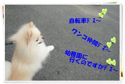 b0167519_1020545.jpg