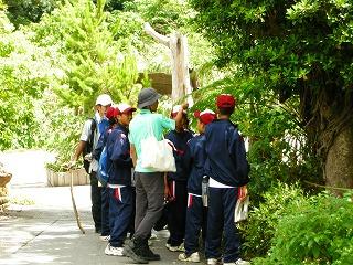 今帰仁中学校自然体験学習_f0121321_18344698.jpg