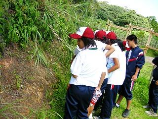 今帰仁中学校自然体験学習_f0121321_18382674.jpg