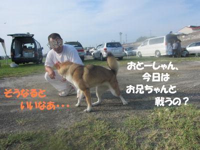 f0143123_2011587.jpg