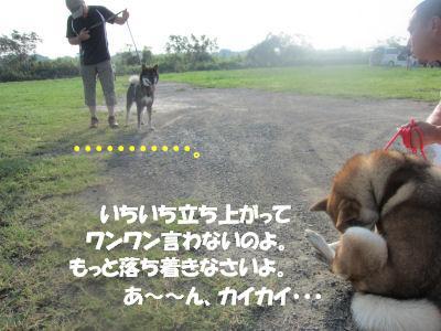 f0143123_20135532.jpg