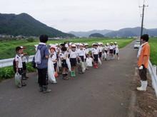 南中山小3年生の子供たちが大豆畑の除草と枝豆の収穫を体験しました_e0061225_1742495.jpg