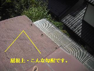 f0031037_21482960.jpg