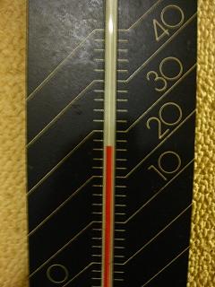 26.5℃_d0074474_1419193.jpg