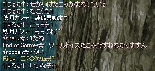 c0067978_824264.jpg