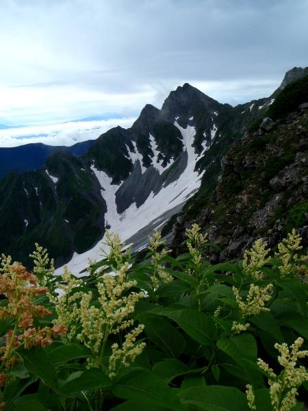 夏休み岩稜歩き-涸沢岳へ_c0177814_025010.jpg