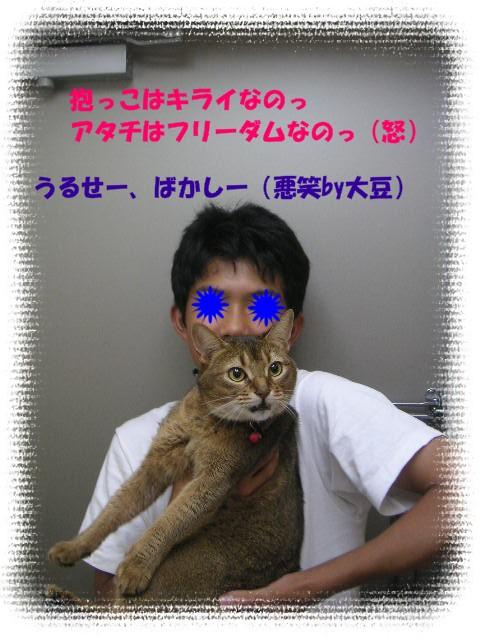 e0138916_701312.jpg