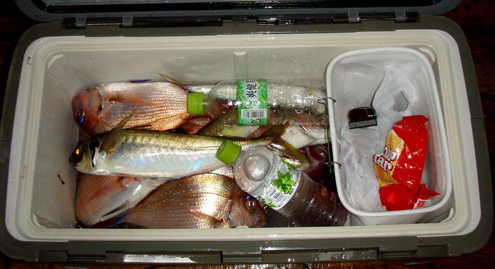 2010年9月15日(木) 知多半島 大井港より釣行_d0171823_23182748.jpg