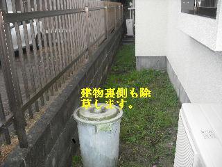 f0031037_1727026.jpg