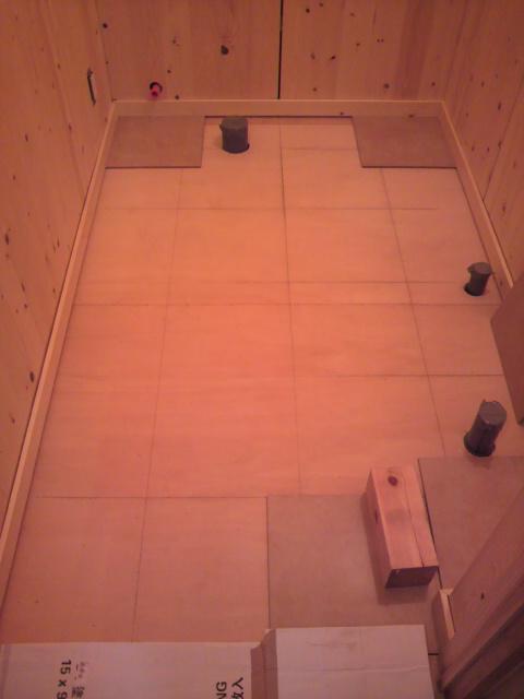 トイレの様子_e0118649_544353.jpg