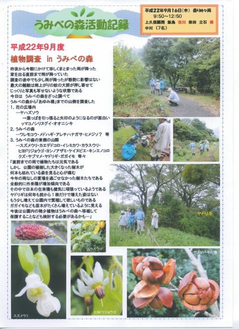 H229月度植物調査_c0108460_16491858.jpg