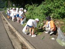 服間小学校の子供たちが枝豆の収穫をしました。_e0061225_1711476.jpg