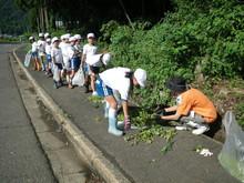服間小学校の子供たちが枝豆の収穫をしました。_e0061225_17115920.jpg