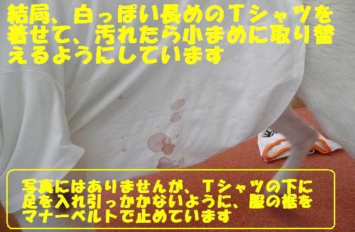 f0121712_10473298.jpg