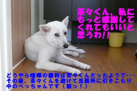 f0121712_1144673.jpg