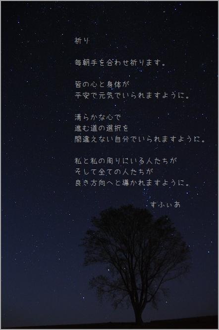 b0152416_115307.jpg