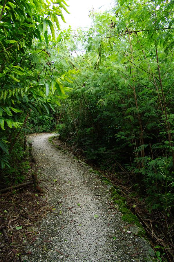 2010年夏のグアム旅行(最終回の前半)~ビーチに掛かる虹、Natur Trail~_c0223825_0364553.jpg