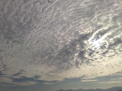 うろこ雲_b0132338_17243254.jpg