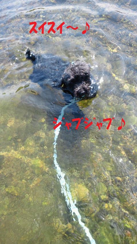 f0236744_23221083.jpg