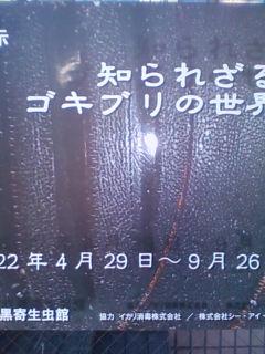 f0138653_17325736.jpg