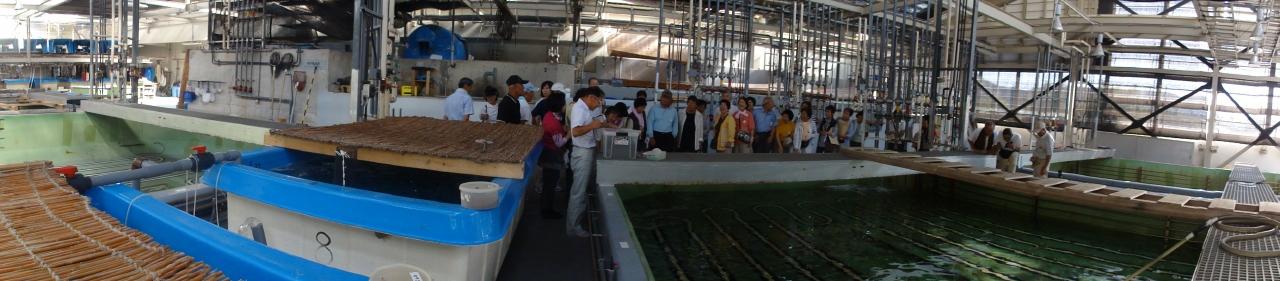 2010年9月度「大人の林間・臨海学校」第1日_c0108460_351915.jpg