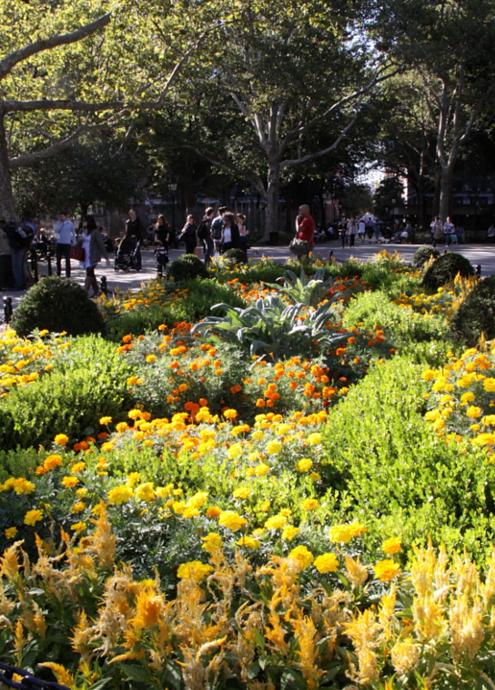 秋っぽくなってきたワシントン・スクエア・パーク風景_b0007805_20133472.jpg