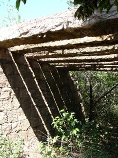 f0136906_1156886.jpg