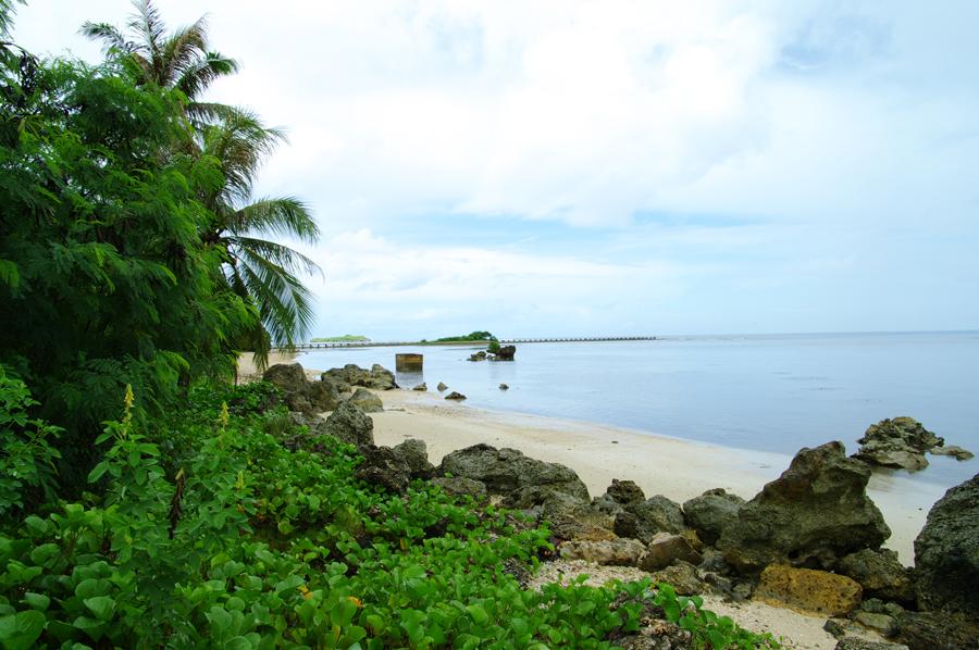 2010年夏のグアム旅行(最終回の後半)~ガン岬、ハマモトフルーツパーク~_c0223825_011970.jpg