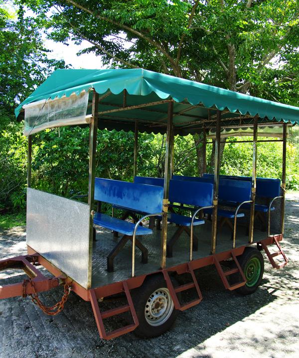 2010年夏のグアム旅行(最終回の後半)~ガン岬、ハマモトフルーツパーク~_c0223825_18503.jpg