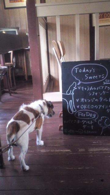 京都にて その2_c0099133_0571280.jpg