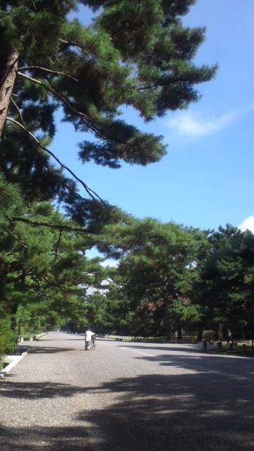 京都にて その2_c0099133_1233132.jpg