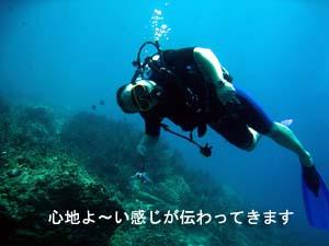 癒しのダイビングへ、お帰りなさ~い_f0144385_20283441.jpg