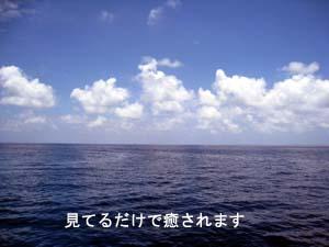 癒しのダイビングへ、お帰りなさ~い_f0144385_20291441.jpg