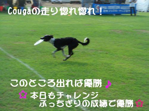 b0101991_22345226.jpg