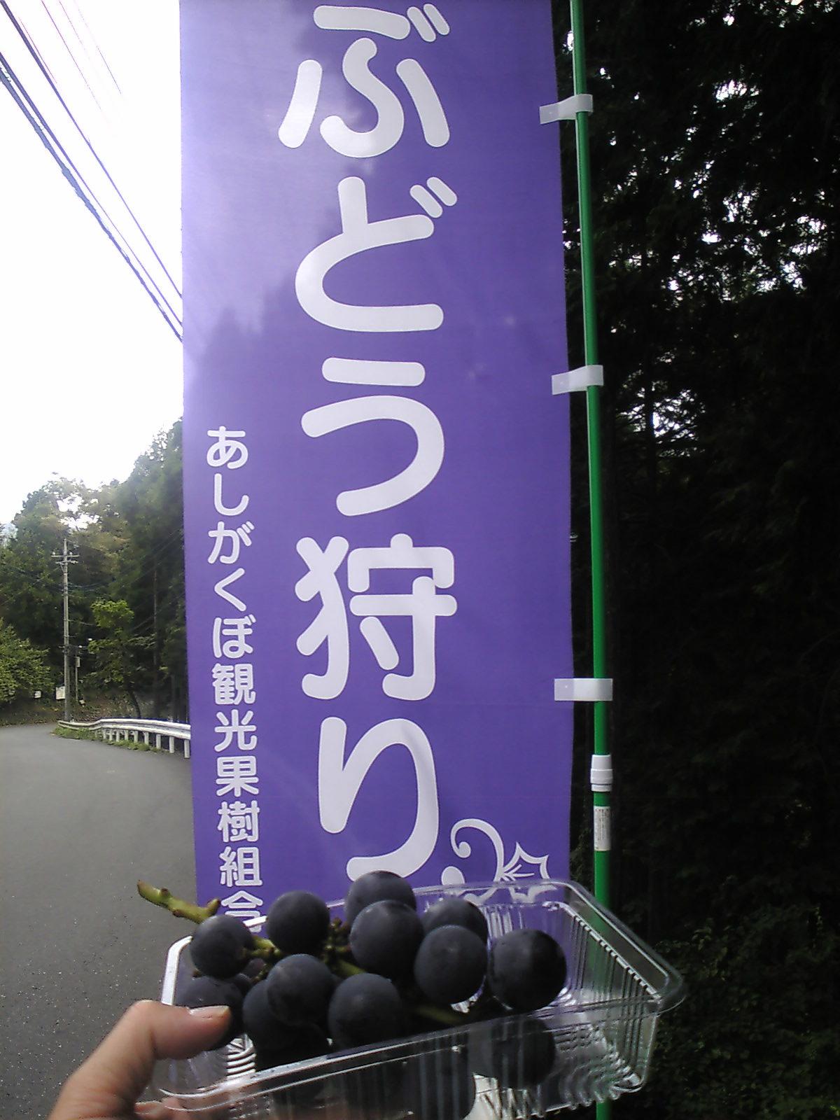 芦ケ久保_b0080104_18112624.jpg