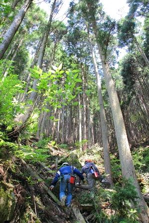 里山デジカメ選手権 写真選び_e0032609_18305537.jpg