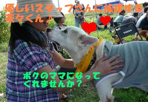 篠崎いぬ親会に参加しました♪_f0121712_22383817.jpg