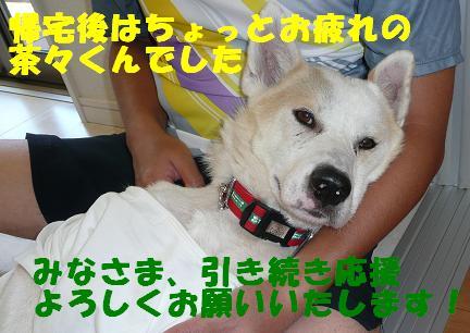 篠崎いぬ親会に参加しました♪_f0121712_2365918.jpg