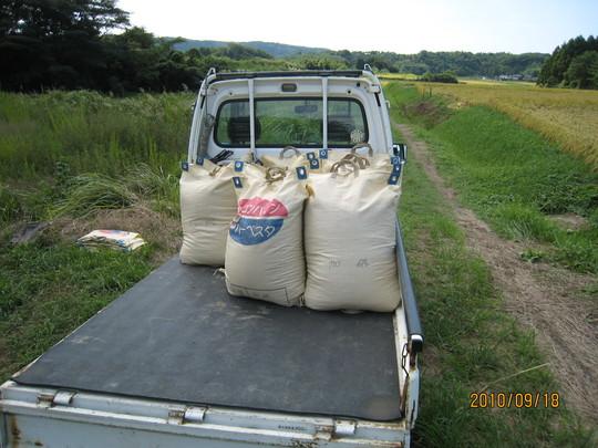 実家で稲刈りの手伝い_e0121558_22301831.jpg