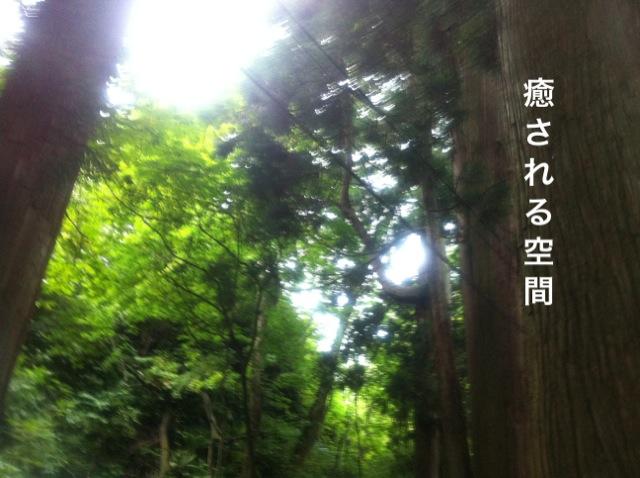 f0168374_16524233.jpg