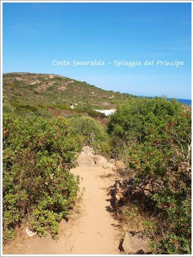 サルデニアの美しい海 Costa Smeralda(コスタ ズメラルダ) その1_f0229410_4144136.jpg